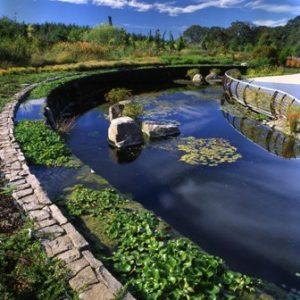amazing-water-garden_web