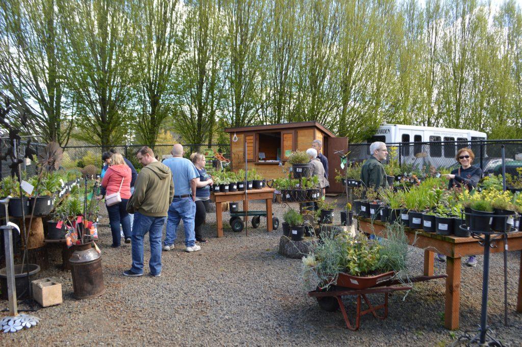 Guests shop at Oregon Garden Retail Nursery